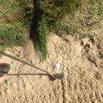 TIP-plugged-bunker-shots-1