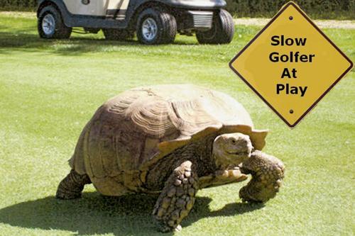 slow-golfer